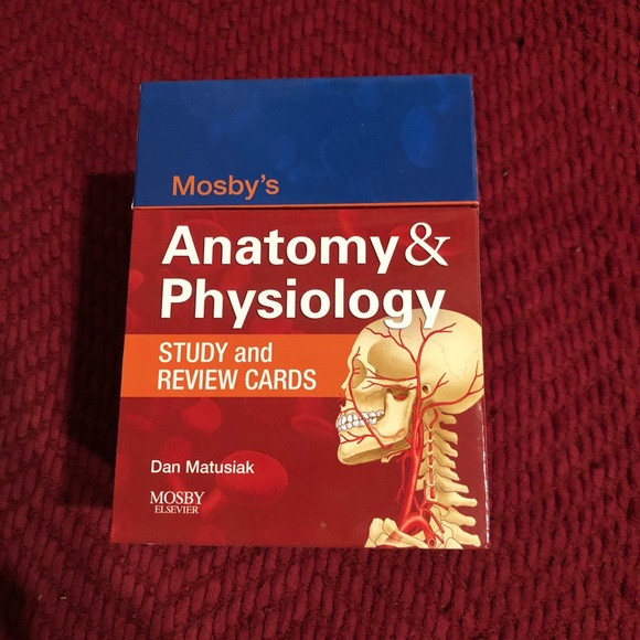 Charmant Mosby Anatomy And Physiology Ideen - Anatomie Von ...